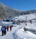 kolasin-montenegro-tours